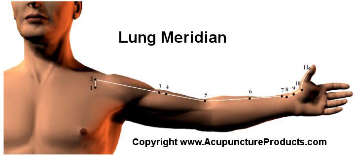 AcupunctureLungMeridian