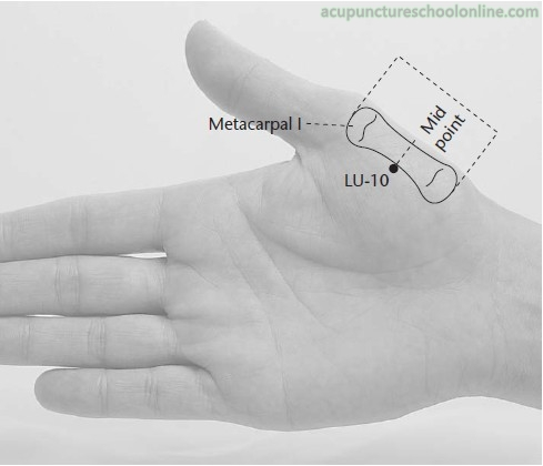 LU-10-Fish-Border-YUJI-Acupuncture-Points-1