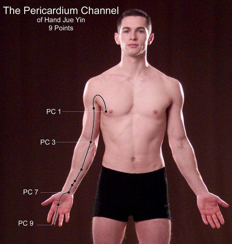 Pericardium-Channel